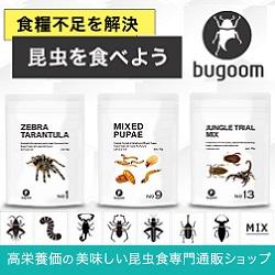 昆虫食セット