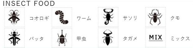 昆虫食bugoom一覧