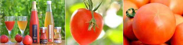 デリシャスファームトマト一覧