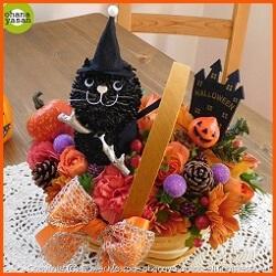 黒猫と魔法の杖